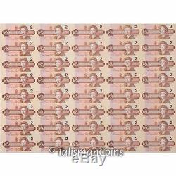 Canada 2016 Toonies 20th Ann. 4 Coin $2 Set Gold & Platinum w 40 Banknotes Uncut